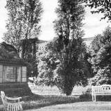 sagan1932.jpg