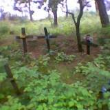 cmentarz-_sierp.jpg