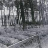 cmentarz_zolnierzy_rosyjskich_z_i_wojny_swiatowej_w_niebedzinie_foto_z_1935_r..jpg