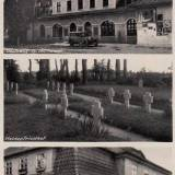 rosslinde_1941.jpg