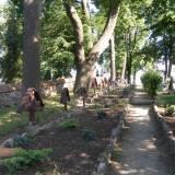 Jeziorany, kwatera IWŚ na cmentarzu katolickim