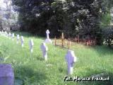 Cmentarz w Kurzeńcu.