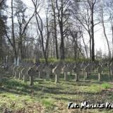 Cmentarz żołnierzy polskich w m. Nowy Świerzeń.
