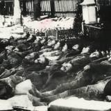 Ciała dwudziestu żołnierzy WP przed pogrzebem w Stonawie.