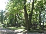 Widok na groby niemieckie i polskie.