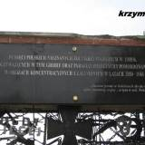 radzanow39.km2.jpg